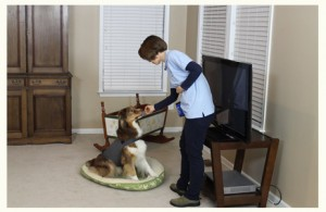 thundershirt-stress-relief-exercise